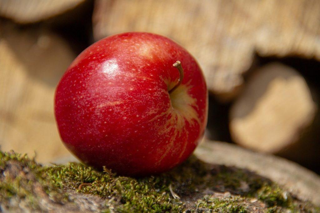 腐ったリンゴとおいしいリンゴ
